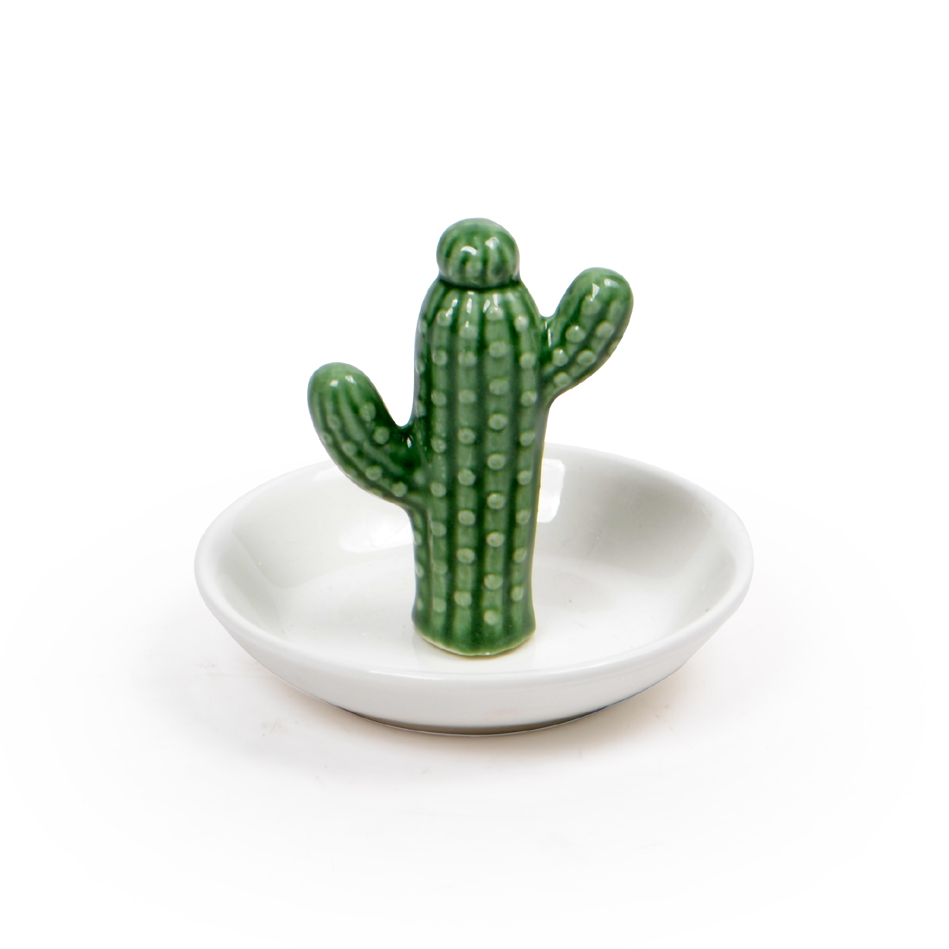 Vaso com Cacto de cerâmica