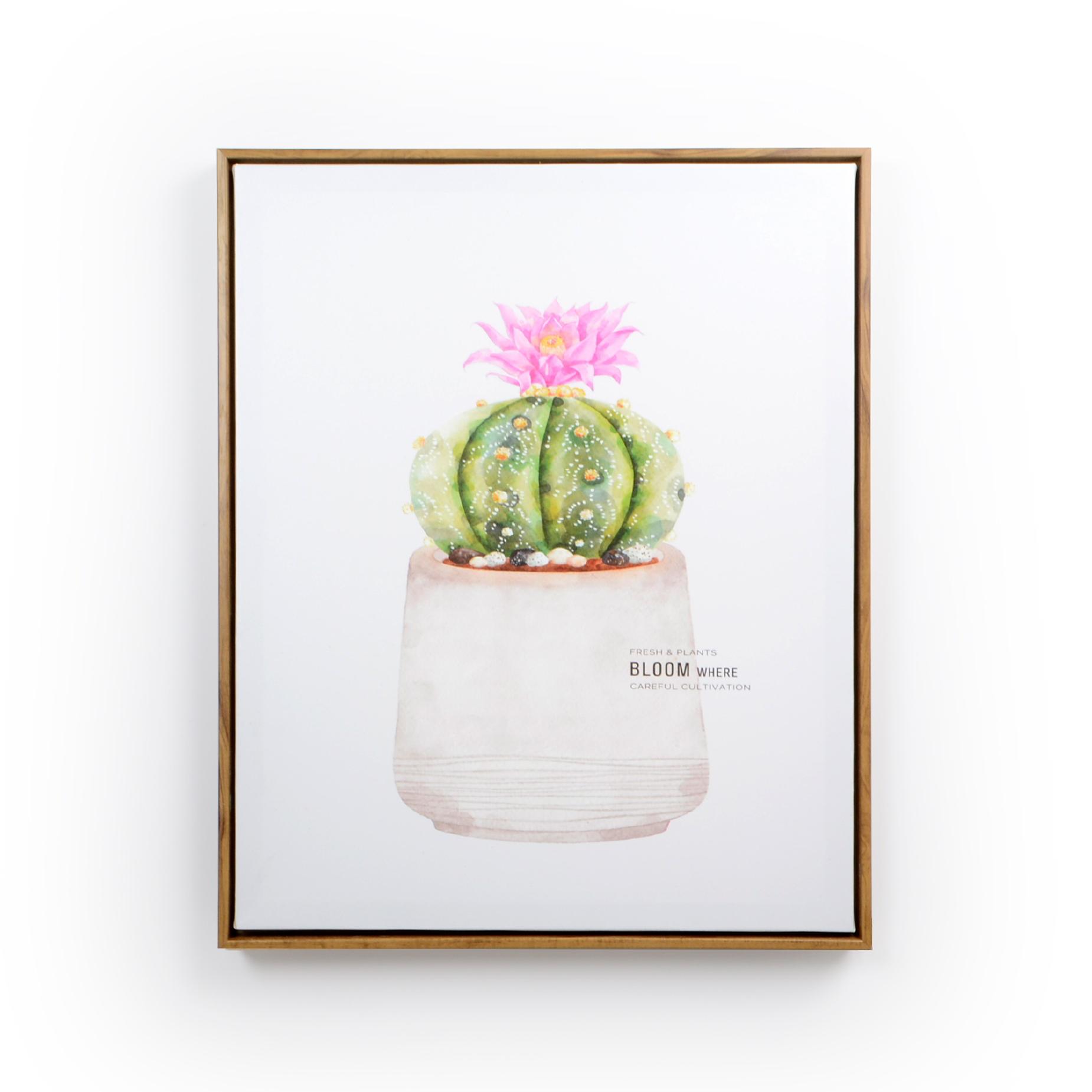 Quadro com moldura de madeira Cacto com flor